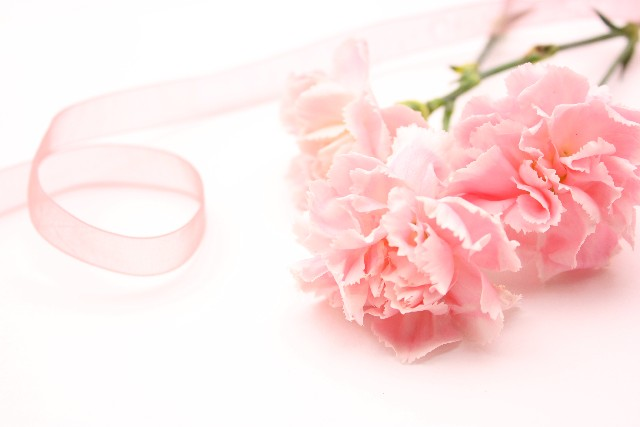 ピンクのイメージ画像